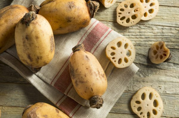Lotus root is considered a tonic for nourishing the stomach.